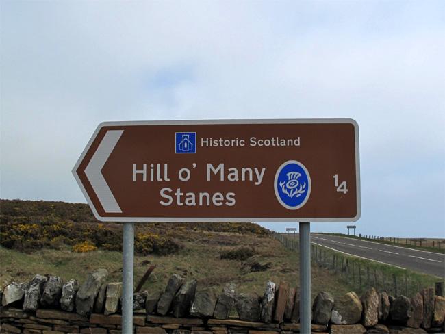 hillmanystanes-2013a.jpg